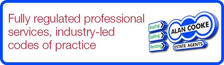 Fully regulated professional services, industry-led codes of practice